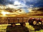 Главной проблемной сферой граждане Грузии считают сельское хозяйство. 23049.jpeg