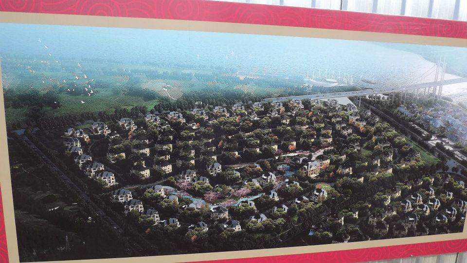 Тбилиси продали китайцам?. 29075.jpeg