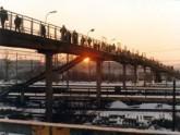 В Грузии построен самый длинный пешеходный мост в Европе. 21225.jpeg