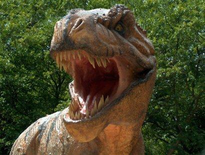 Динозаврам Чечни требуется экспертиза. 27246.jpeg