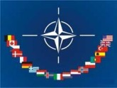 Эксперт: НАТО видит и ценит последние успехи Грузии. 24328.jpeg