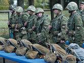 Российские военные отправятся в Сирию?. 27338.jpeg
