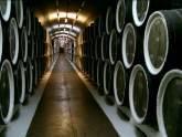 Онищенко готов лично посетить винные заводы Сакартвело. 23546.jpeg