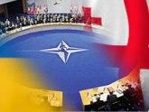 Аласания: Грузия отдалилась от НАТО. 25569.jpeg