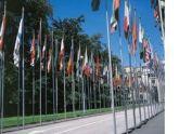 Грузия готовится к Женевским переговорам. 25610.jpeg