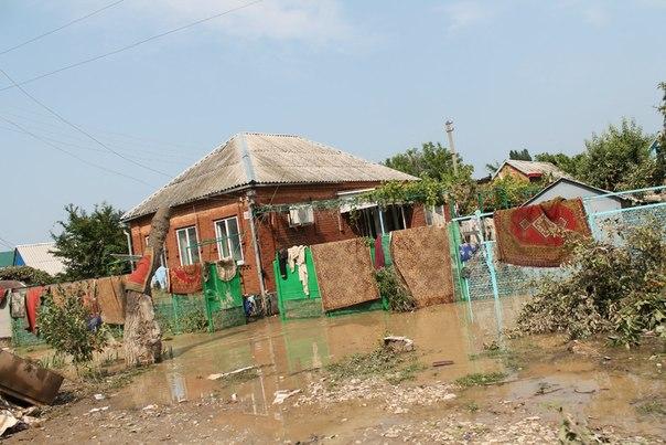Экологи спасают Крымск. 27623.jpeg