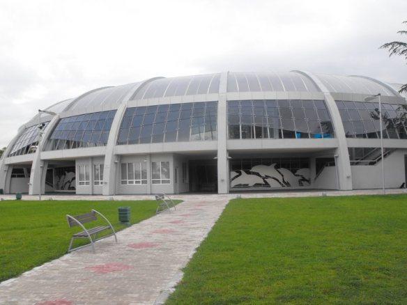 Ivanishvili was expelled from Batumi Park. 27667.jpeg
