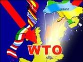 Манджгаладзе: Вступление России в ВТО ее ко многому обяжет. 24740.jpeg