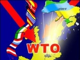 Manjgaladze: Russia's accession to the WTO would oblige a lot. 24752.jpeg