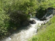 Грузинских крестьян оставили без воды. 27757.jpeg