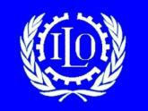The ILO researches Azerbaijani labor market. 23793.jpeg