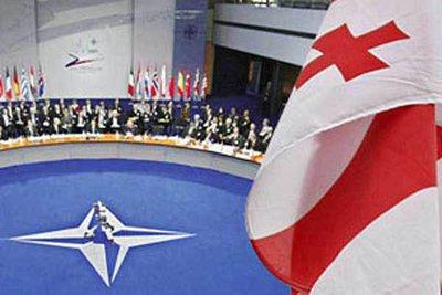 Price of NATO accession. 26795.jpeg