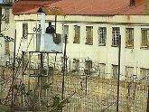 Грузия — тюрьма для россиян. 26830.jpeg