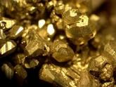 Золотая лихорадка в Сакдриси. 29834.jpeg