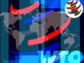 ЕС удовлетворен подвижками в переговорах по ВТО. 23850.jpeg
