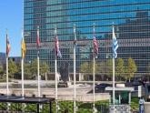 Саакашвили готовится к докладу в ООН. 21890.jpeg