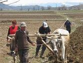 An agricultural kept woman. 23950.jpeg