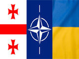 Долгая дорога в НАТО...