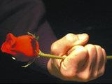Revolution of Roses: Sad Result