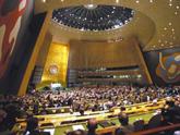 Цхинвал: эта резолюция опозорила ООН