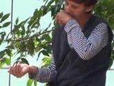 Азербайджан: да не оскудеет рука дающего
