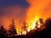 Боржомские пожары – вне Женевской конвенции