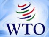 Сквозь Грузию в ВТО