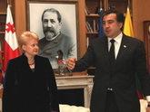 Саакашвили провалил экзамен Литве