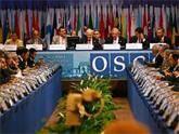 ОБСЕ становится заложницей амбиций Тбилиси