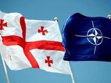 Альянс погладил Грузию