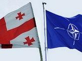 Ассамблея НАТО потрафила Грузии