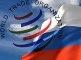 Тбилиси прищемили в дверях ВТО