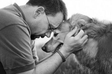 Ученые: Собаки «заражаются» стрессом от хозяев