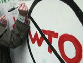 Грузию приструнят по правилам ВТО