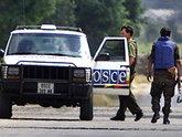 Визит генсека ОБСЕ в Грузию омрачил инцидент