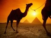 Мишико забыл свой народ в Египте