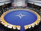 Грузинские политики любят НАТО даже в мини
