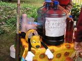 Кахетинцы переходят на медовуху
