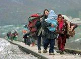Беженцев отправят в детский сад