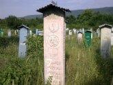 Война с чеченскими мертвецами