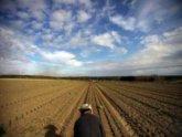 Саакашвили продал родную землю