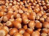 Грузинские фермеры теряют орехи