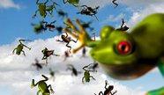 В США прошел дождь из лягушек